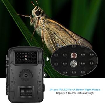 WildKamera Aoleca 8 Millionen Pixel Auflösung 720P HD Wildlife Kamera 60° Grad Weitwinkel Wasserdichte IP54 Jagd Trail Kamera und Nachtsichtfunktion durch mit 26 IR LEDs und Bewegungserkennung ideal für Wildbeobachtung, Spiel, zur Überwachung und zum Auskundschaften(32GB Kapazität ) -